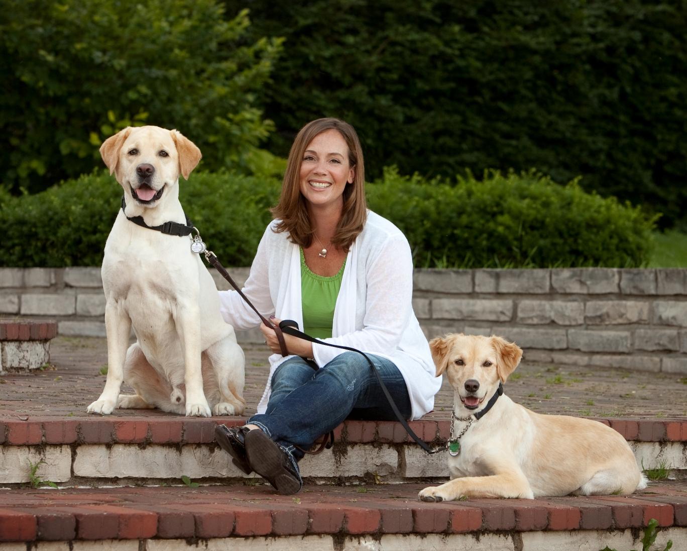 dog training oak park il